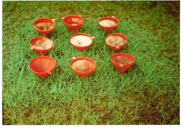 1981 – אמנים צעירים – משפכים אדומים דשא ירוק